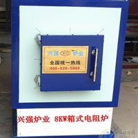 供应兴强牌较新技术箱式电阻炉