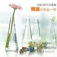 供应易家玻璃花瓶工艺品瓶