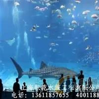 上海承接酒店海鲜缸及水族工程