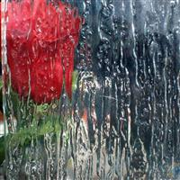 雨花压花玻璃