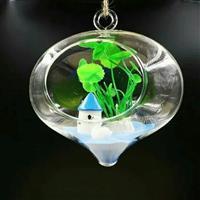玻璃養花器
