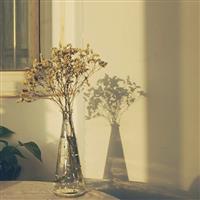 简约透明玻璃水培锥形台面花瓶