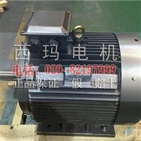 YE2-100L-2高效电机