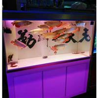 太倉魚缸定做智能創意水族箱