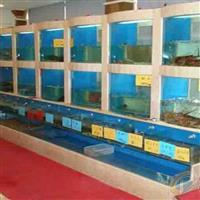 三亚春园路海鲜鱼池设计,三亚海花路海鲜池哪里有定做