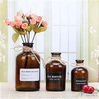 北歐花瓶ins風宜家家居裝飾花器擺件飾品水培花瓶