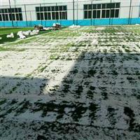 大连供应精制石英砂、水处理石英砂、石英砂