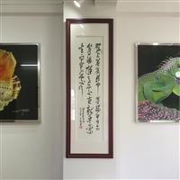 广州珐琅彩玻璃厂家 艺术玻璃 玻名家饰
