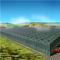 生态温室大棚餐厅投资造价预算