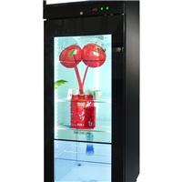 青岛透明屏冰箱-触摸屏冷藏柜厂家零售