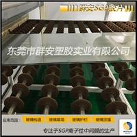 國產sgp膠片廠家直銷 建筑玻璃幕墻輔料