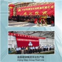 上海供應金晶玻璃集團浮法生產線