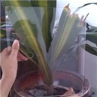 高硼硅玻璃厂家 3.3高硼硅浮法玻璃定制