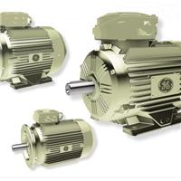 通用电机,GE电机,高速双边磨电机,磨边机电机