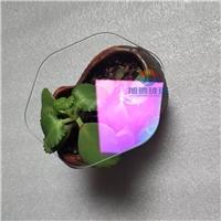 松山湖概念AR玻璃厂 六边形AR玻璃批发