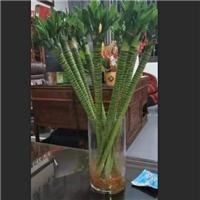 广州采购-玻璃花瓶