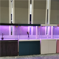 漯河鱼缸成批出售市场 漯河哪有卖鱼缸的厂家 漯河鱼缸