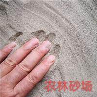 湛江石英砂厂家,干砂199元每吨。